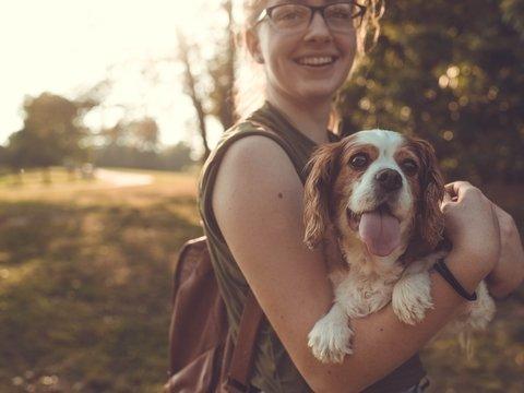 Хотите узнать человеческий возраст вашей собаки? Доставайте калькуляторы