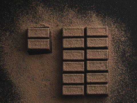 В Австрии вор похитил 20 тонн шоколада — наверное, к Рождеству готовился