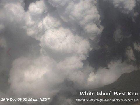 В Новой Зеландии вулкан начал извергаться, когда у кратера были туристы