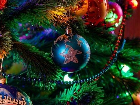 Сколько дней новогодних праздников ты выдержишь?