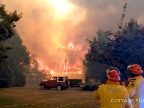 Добавить огоньку: Австралия горит, но в Сиднее всё равно устроят фейерверки