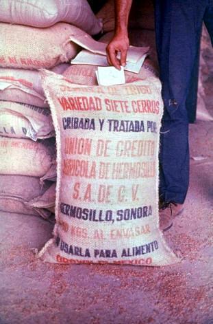 Мешки с ртутным зерном