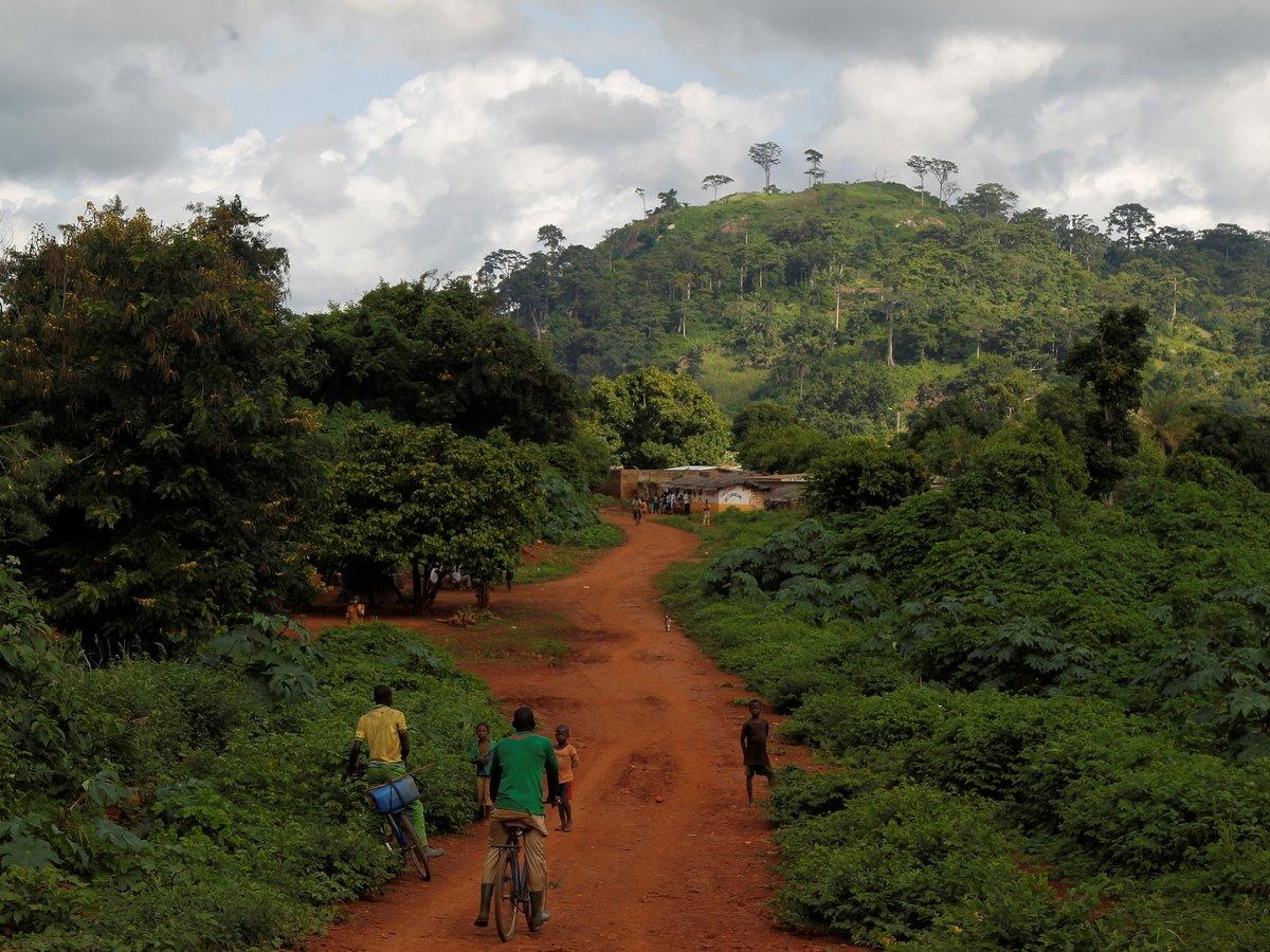"""""""Лёгкие планеты"""" перестают работать. Тропическим лесам трудно поглощать CO2"""