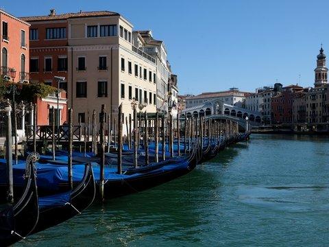 Коронавирус очистил Венецию от туристов и грязи. В каналы даже вернулись рыбы