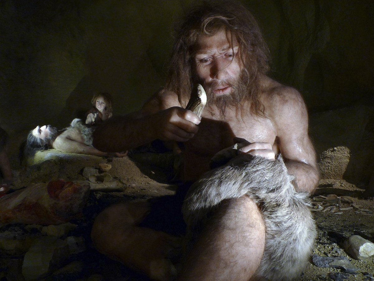 Неандертальцы были гурманами: они ели акул и дельфинов
