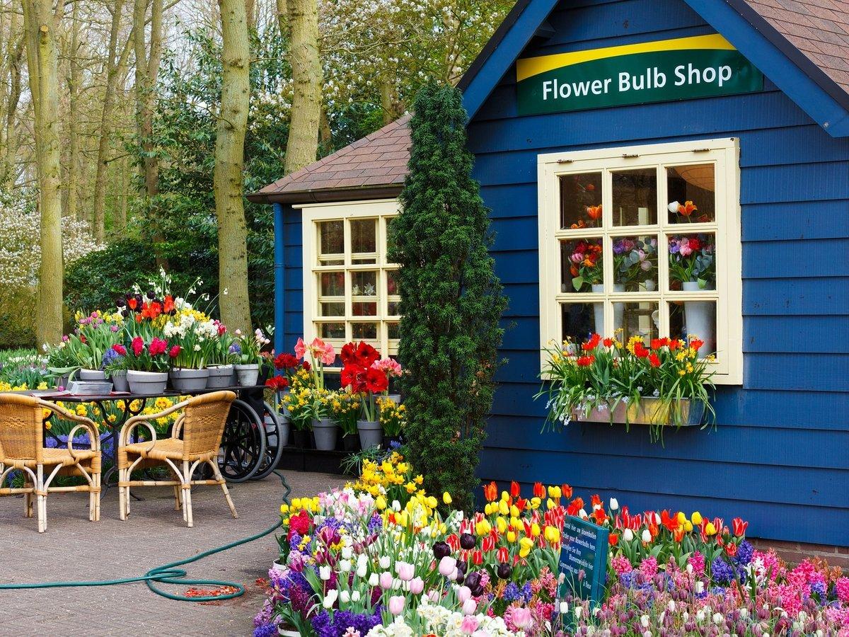 Как выживают цветочные магазины в условиях карантина?