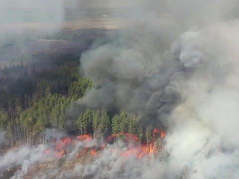 Пожары в Чернобыле: огонь подобрался к Припяти и хранилищу радиоактивных отходов