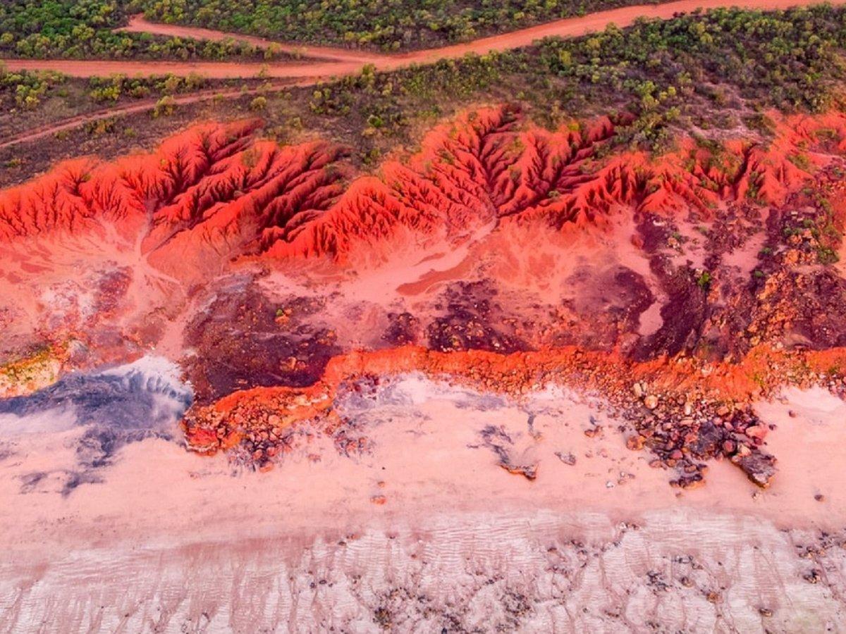 Пляжи в Новой Зеландии стали ярко-красными из-за миллионов мёртвых крабов (фото)