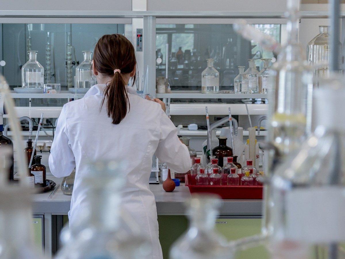 Органы на заказ: учёные вырастили функциональную мини-печень