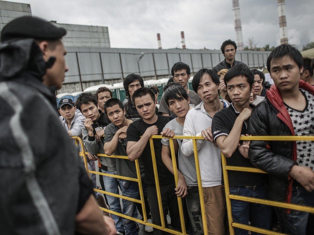 Путин пригласил мигрантов на работу — это грозит безработицей гражданам РФ