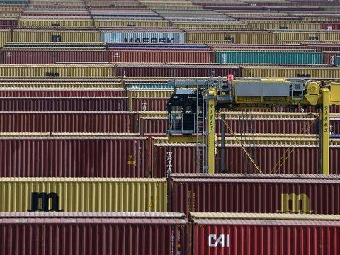 В Нидерландах нашли самодельные камеры пыток в грузовых контейнерах (видео)