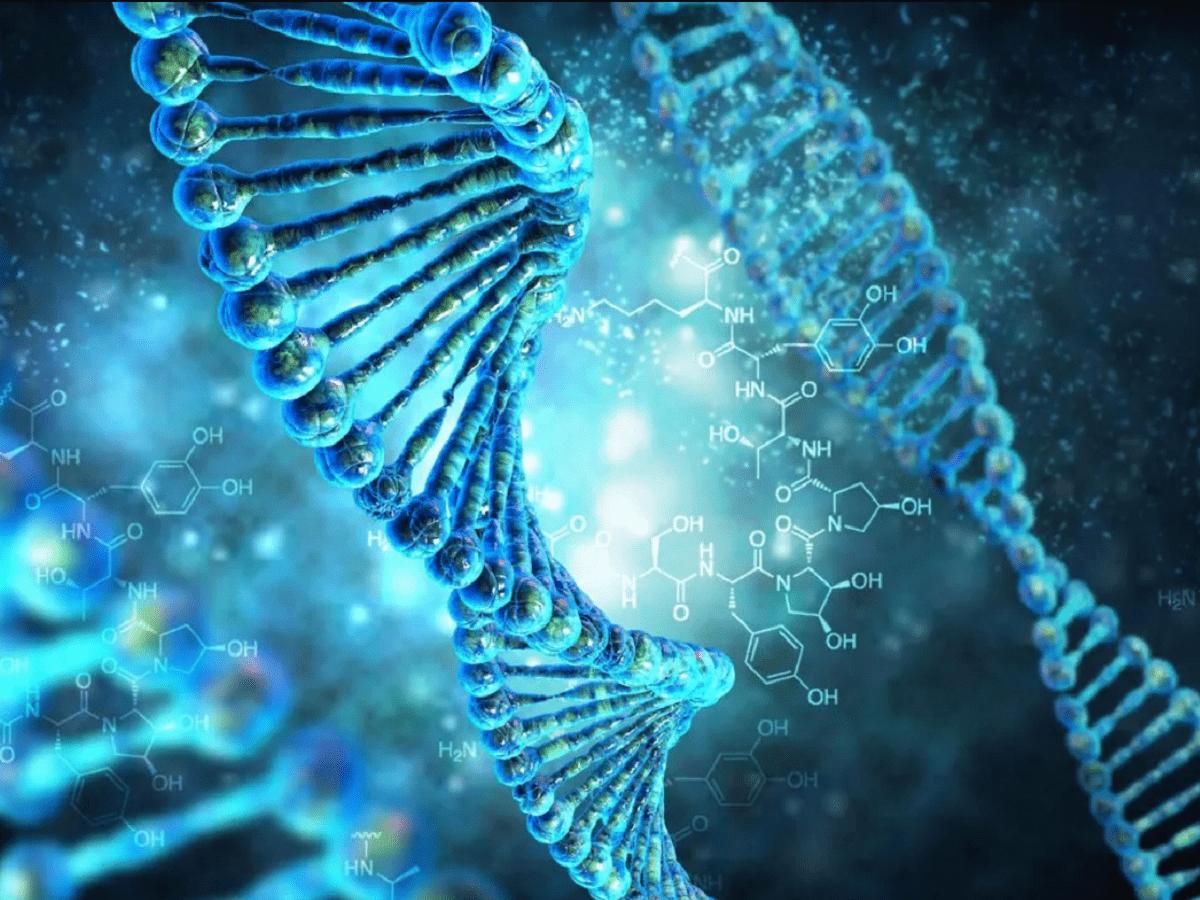 Учёные: Политические взгляды и расизм предопределены генетически