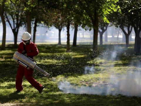 В Испании новая вспышка заражений. И это не коронавирус