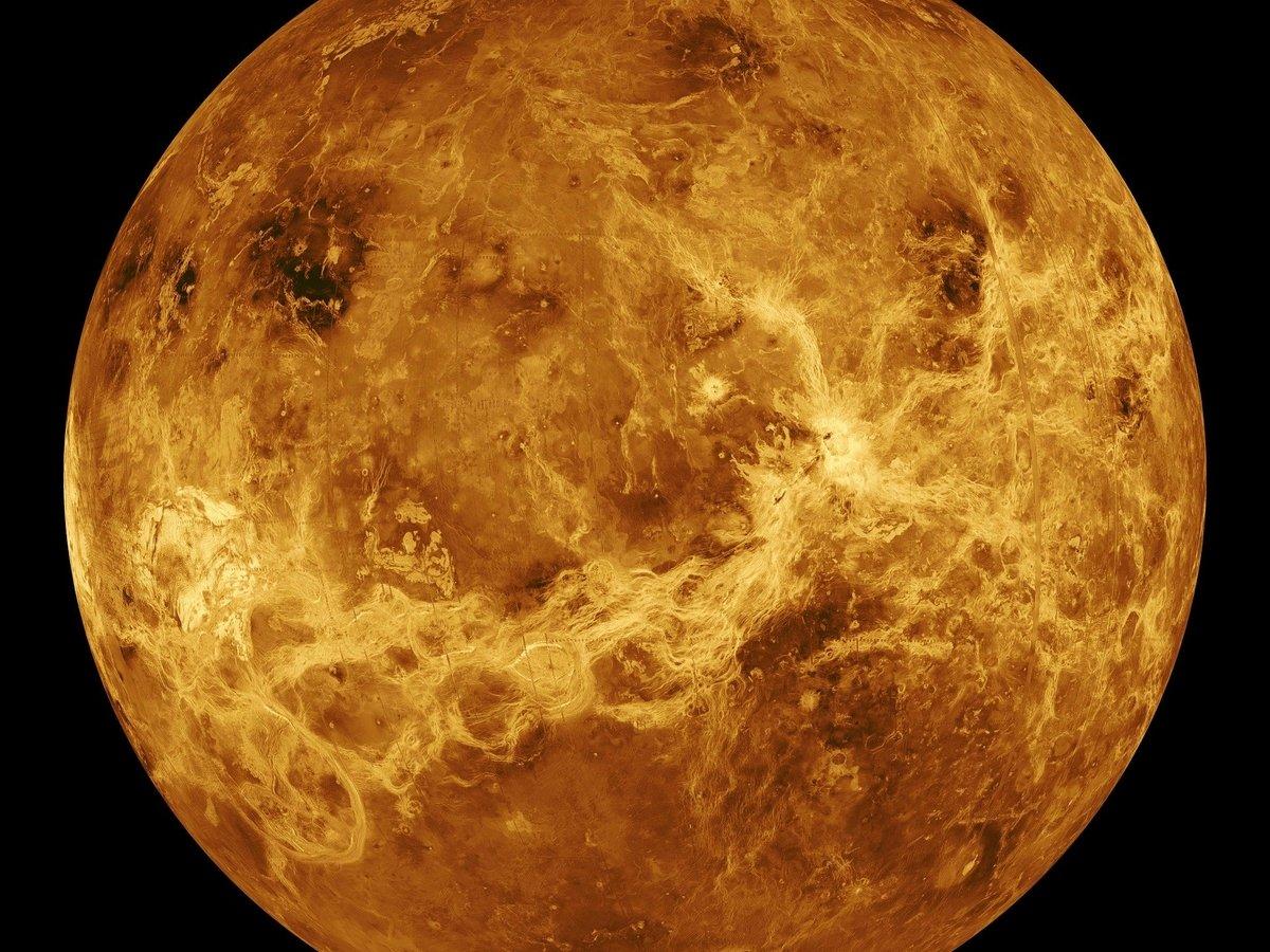 Есть ли жизнь на Венере? Новое открытие озадачило учёных