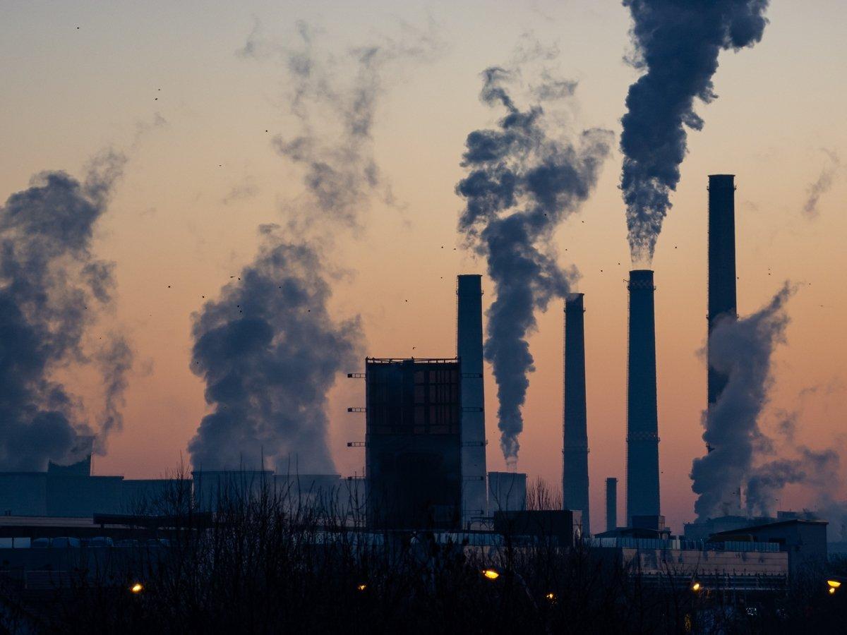 Подышал — и всё: вредные выбросы в атмосферу приводят к депрессии