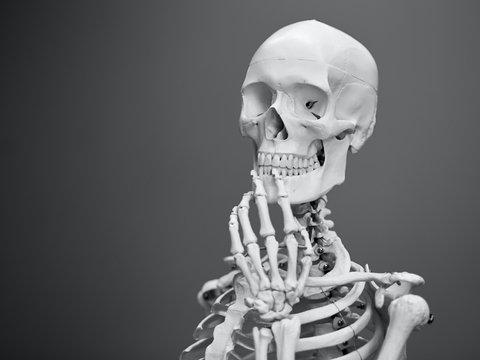 Учёные выяснили: азиаты тоже были европейцами — 34 000 лет назад