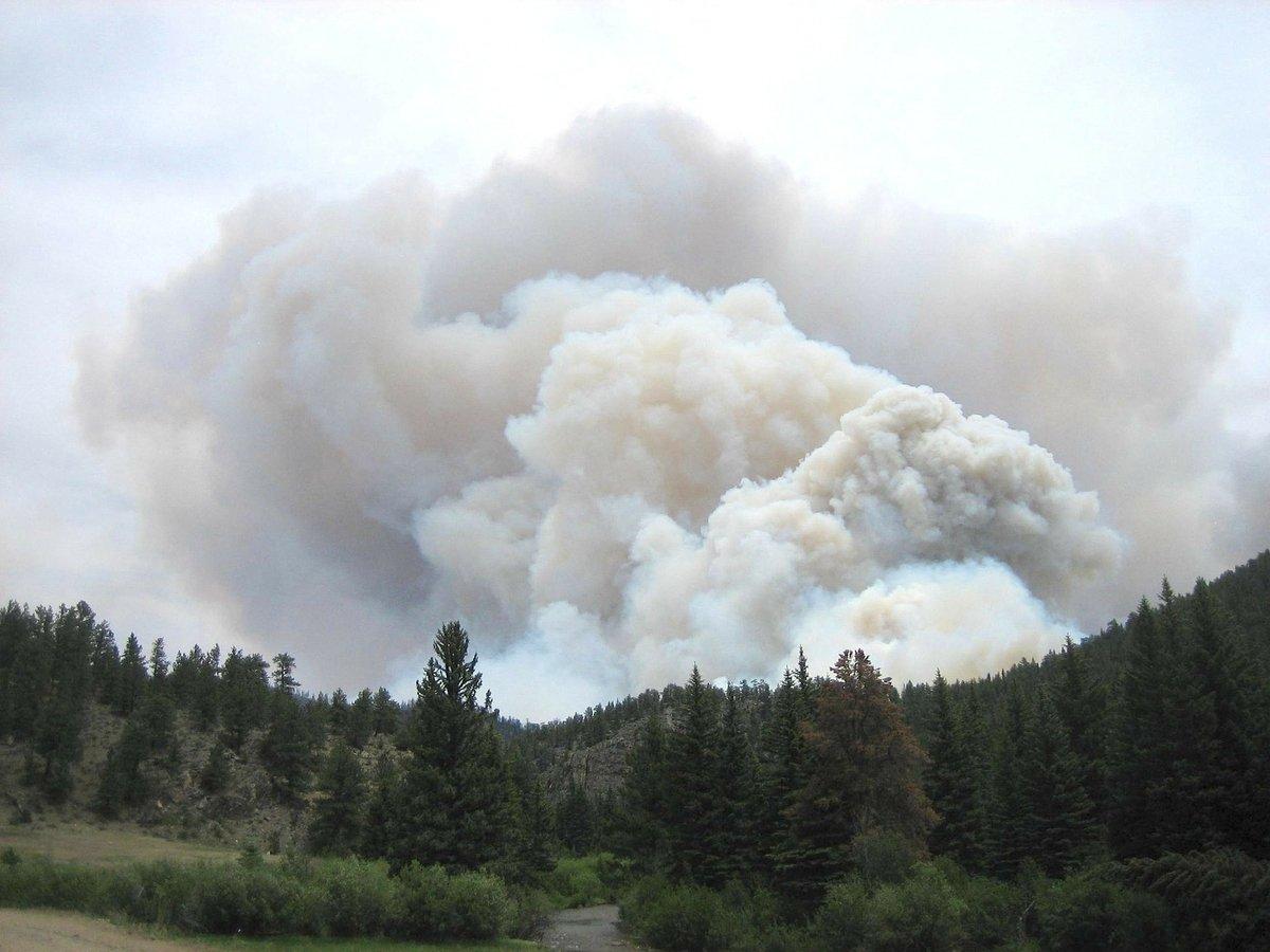Дым от лесных пожаров может переносить инфекционные заболевания
