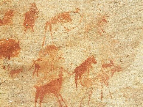 В Индонезии нашли старейшую наскальную живопись с изображением животного