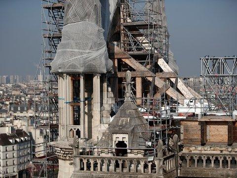 Нотр-Дам отстроят заново, но рады не все. Почему экологи против реконструкции?