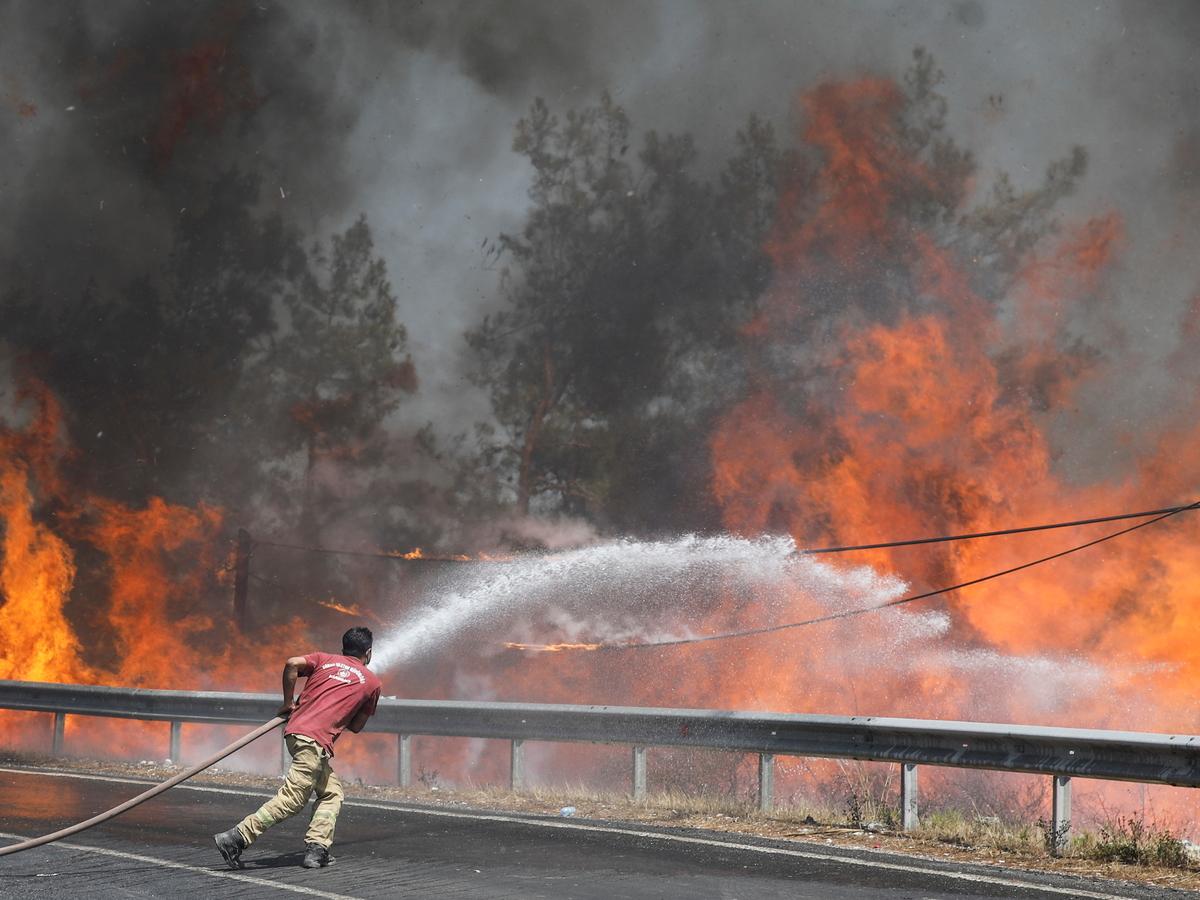 Жара и поджоги: в Европе горит побережье Средиземного моря