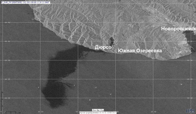 Радиолокационное изображение получили с помощью спутника Sentinel-1